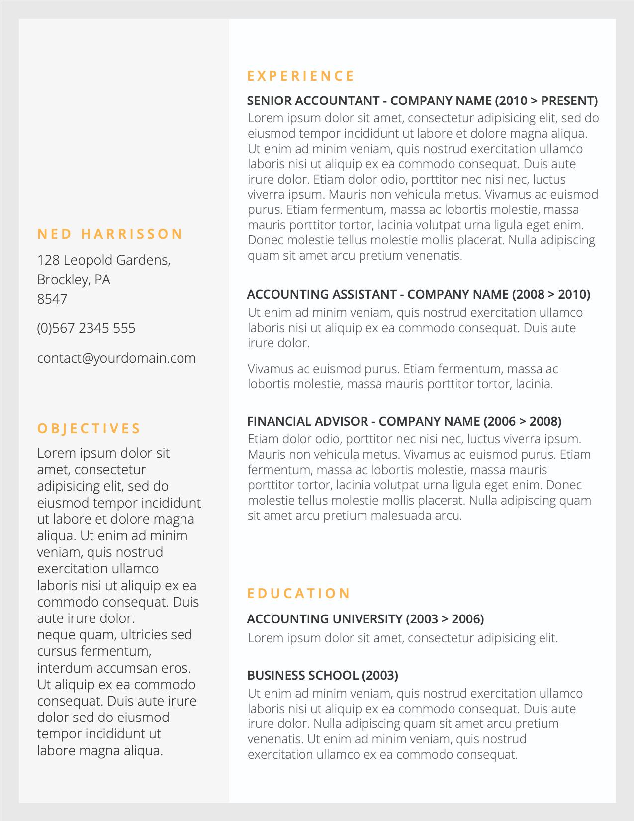 CV Template Option 1