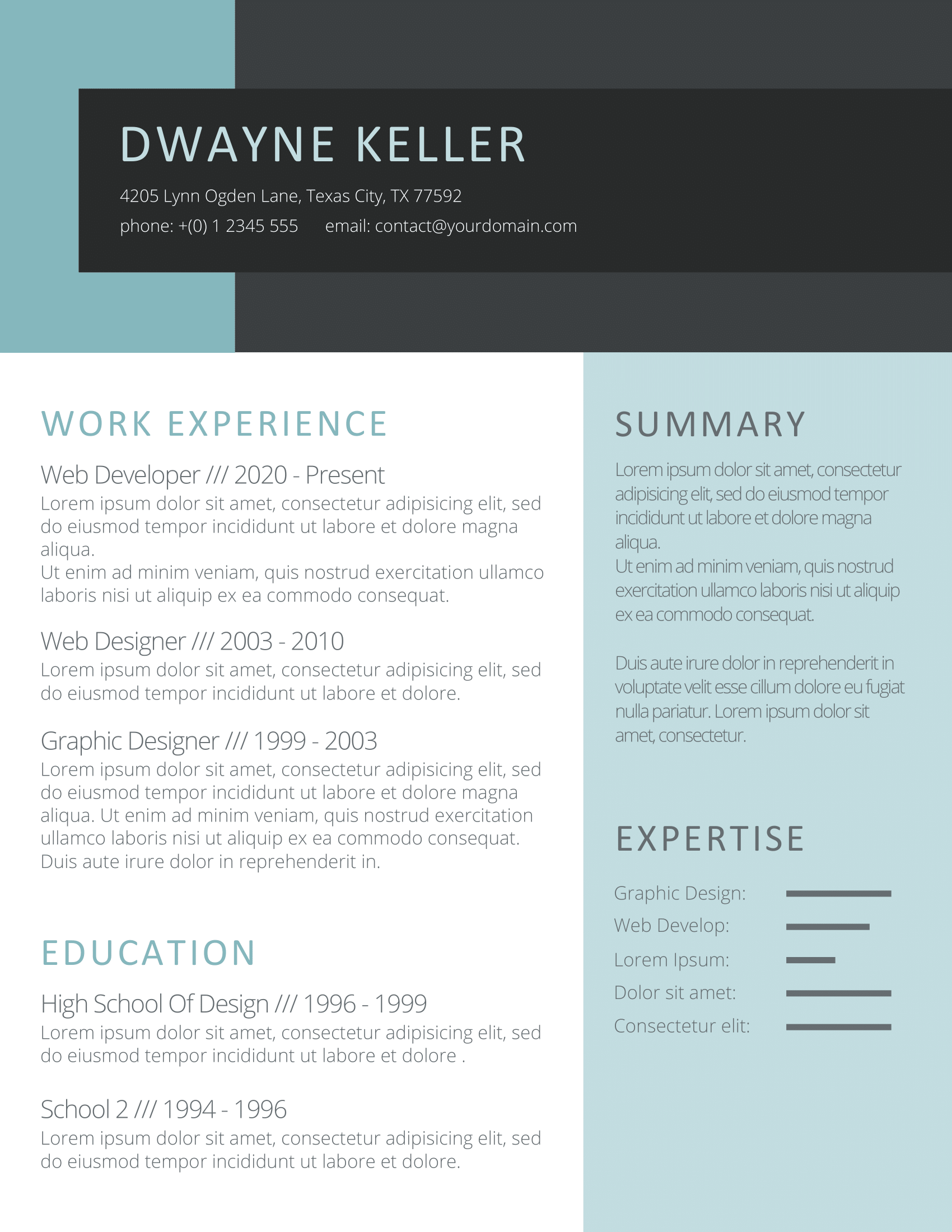 CV Template Option 9