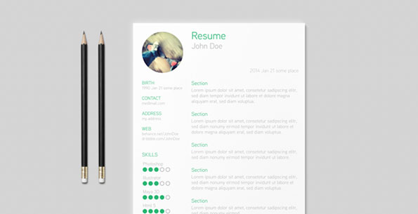 Resume Template by Tillman Roeder